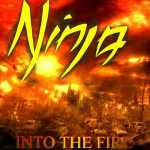 Ninja - Into The Fire Artwork